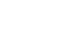 Logo35 2
